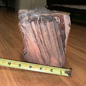 12-lb petrified wood